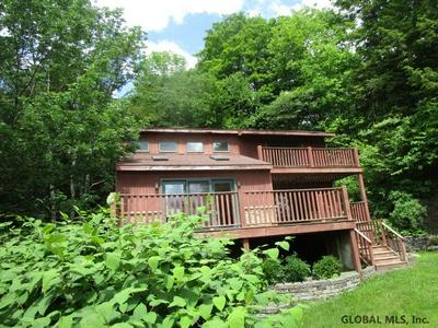 350 BEAR GULCH RD, Summit, NY 12175 - Photo 2