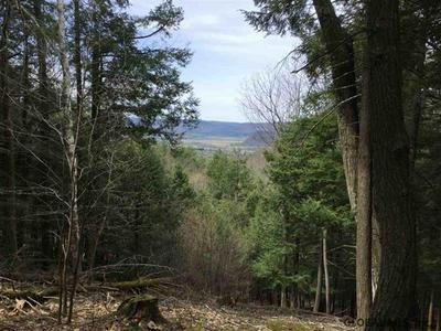 0 COTTON HILL RD, Middleburgh, NY 12122 - Photo 1