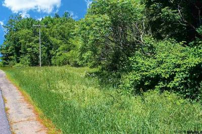 0 BORNT RD, Broadalbin, NY 12025 - Photo 2
