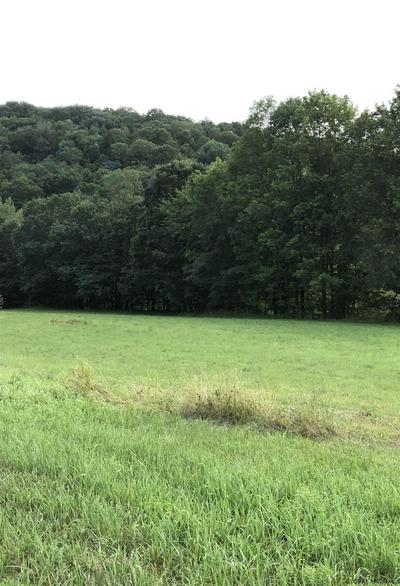 0 STATE ROUTE 29, Greenwich, NY 12834 - Photo 2
