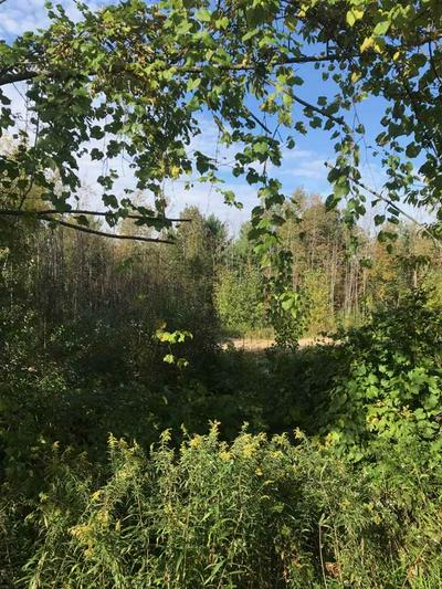 LOT 1 PERTH RD, Galway, NY 12086 - Photo 2