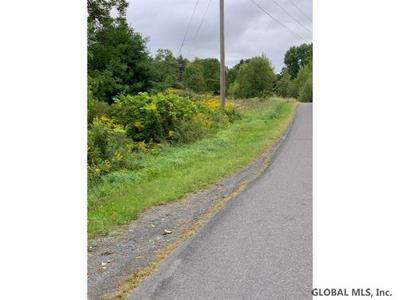 46 MAMMOTH SPRING RD, Wynantskill, NY 12198 - Photo 2