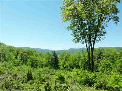 00 GOODELL RD, Petersburgh, NY 12138 - Photo 1