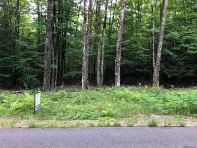 1 GOODMAN RD, Johnsburg, NY 12843 - Photo 2