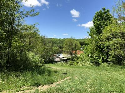 WARNER LAKE RD, East Berne, NY 12059 - Photo 2