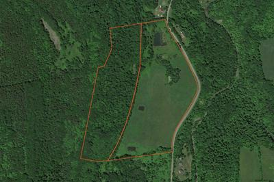 0 GIFFORD HOLLOW RD, Berne, NY 12023 - Photo 1