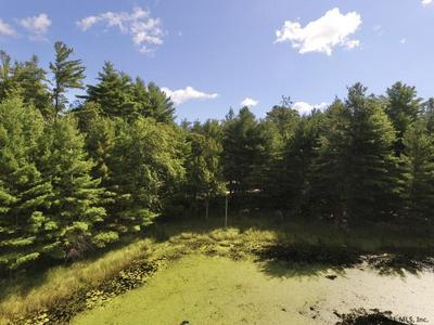 0 ANTLER LAKE RD, Johnsburg, NY 12843 - Photo 2