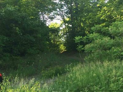 0 SHINE HILL RD, Hartford, NY 12838 - Photo 2