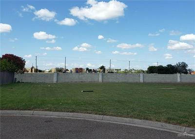 3303 N TOLEDO ST, Pharr, TX 78577 - Photo 1