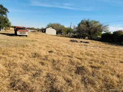1418 N BENTSEN PALM DR, Palmview, TX 78574 - Photo 2