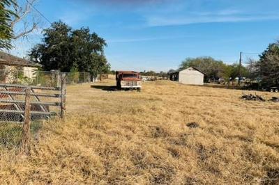 1418 N BENTSEN PALM DR, Palmview, TX 78574 - Photo 1