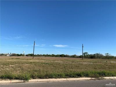 1330 CARLOS DR, ALAMO, TX 78516 - Photo 2
