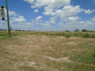 0 ANAYA ROAD, Pharr, TX 78577 - Photo 2