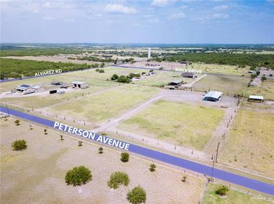 103 PETERSON DR, Rio Grande City, TX 78582 - Photo 2