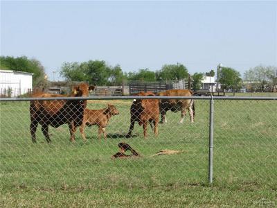 4018 TBD N TAYLOR ROAD, McAllen, TX 78504 - Photo 2