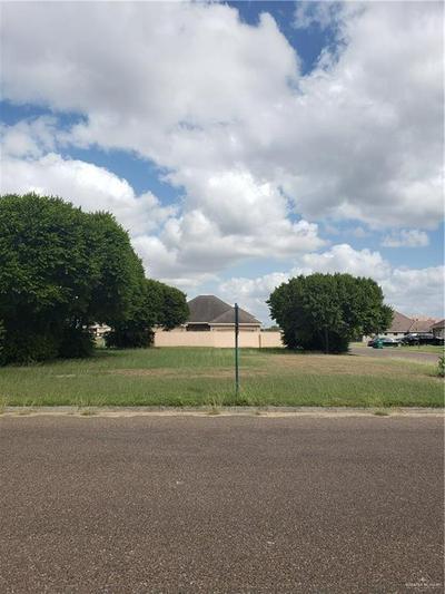 903 TARA DR, Pharr, TX 78577 - Photo 1