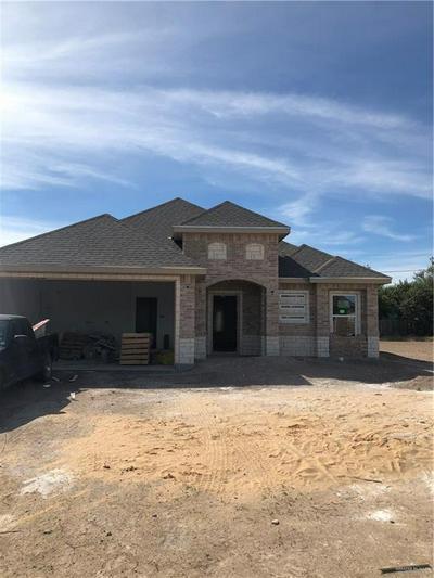 1323 13TH ST, ALAMO, TX 78516 - Photo 1