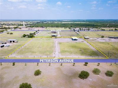 103 PETERSON DR, Rio Grande City, TX 78582 - Photo 1