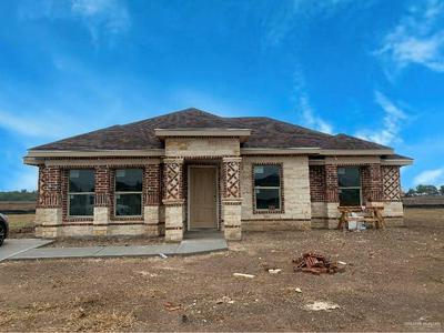 814 DOVE ST, ALAMO, TX 78516 - Photo 1