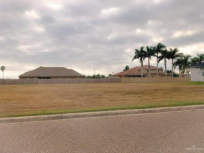3817 TIERRA ESCONDIDA, Weslaco, TX 78596 - Photo 1