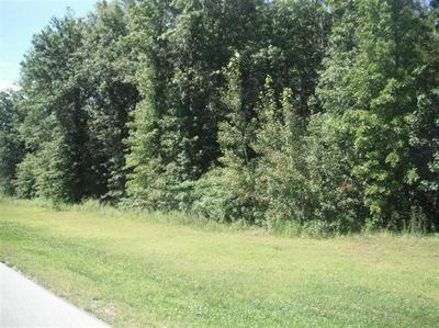 0 LOT 34 PEACOCK, Wheatfield, IN 46392 - Photo 2