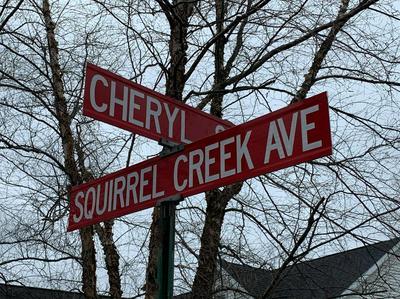 0 SQUIRREL CREEK AVENUE, Portage, IN 46368 - Photo 2