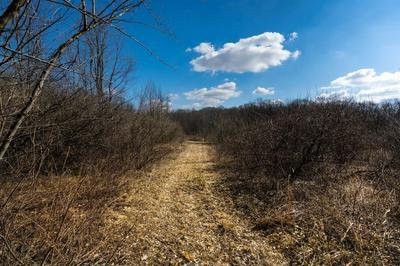 0 N 500 E, Rolling Prairie, IN 46371 - Photo 1