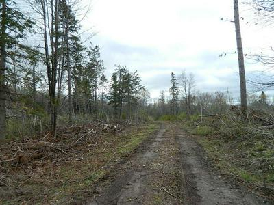 ON WESTERN BREEZE RD # LOT 6, Ojibwa, WI 54862 - Photo 2