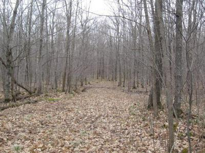 ON HILLTOP RD, CATAWBA, WI 54515 - Photo 2