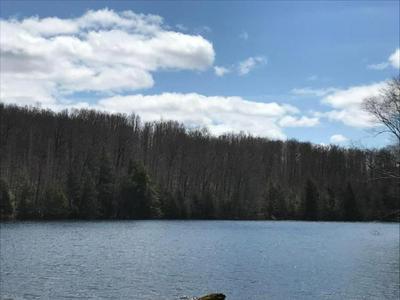 LOT 11 CRAWFORD LAKE RD # LOT 11, PICKEREL, WI 54465 - Photo 1