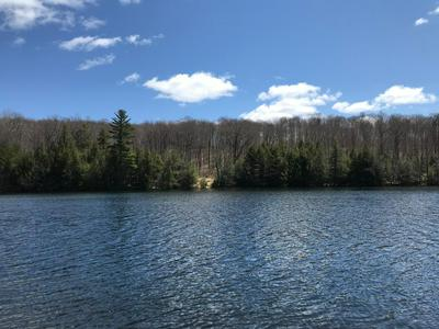 LOT 8 CRAWFORD LAKE RD # LOT 8, PICKEREL, WI 54465 - Photo 1