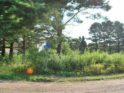 ON MARY ST, Argonne, WI 54511 - Photo 1