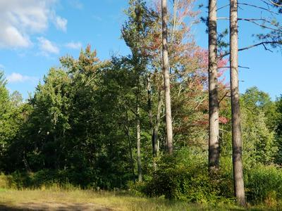OFF OLD RD, Tomahawk, WI 54487 - Photo 2