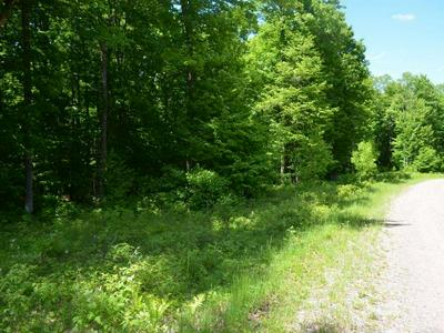 ON ARMSTRONG CREEK CT # LOT 73, Armstrong Creek, WI 54103 - Photo 2
