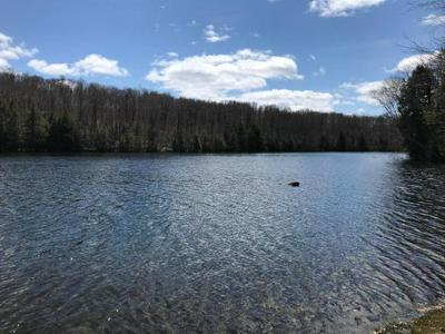 LOT 9 CRAWFORD LAKE RD # LOT 9, PICKEREL, WI 54465 - Photo 1