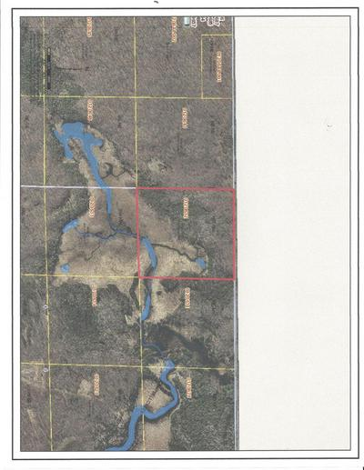 NEAR GRASS LAKE RD, Pickerel, WI 54465 - Photo 1