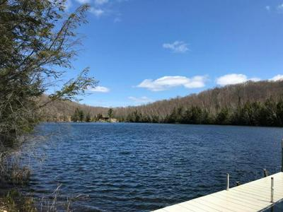 LOT 5 CRAWFORD LAKE RD # LOT 5, PICKEREL, WI 54465 - Photo 2