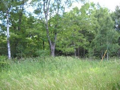 ON HWY 111, CATAWBA, WI 54515 - Photo 1