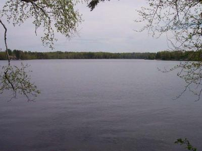 8698 W SQUAW LAKE RD, LAC DU FLAMBEAU, WI 54538 - Photo 2