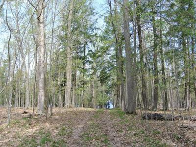 LOT 8 BO DI LAC DR S, Minocqua, WI 54548 - Photo 2