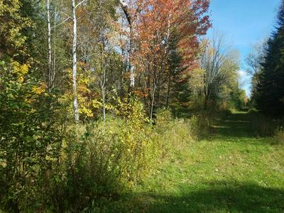 ON TRAPPERS RD, Phillips, WI 54555 - Photo 2