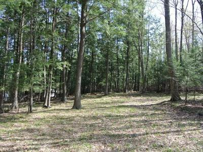 LOT 10 BO DI LAC DR S, Minocqua, WI 54548 - Photo 2