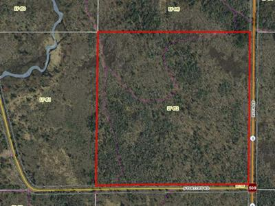 38 ACRES RUTH RD, Tripoli, WI, WI 54564 - Photo 2