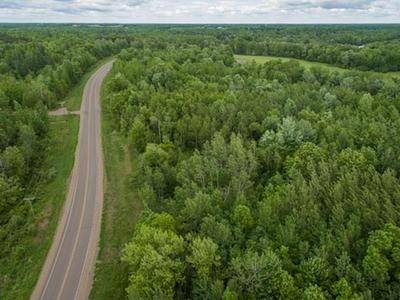 18 & 19 CTH D, Holcombe, WI 54745 - Photo 2