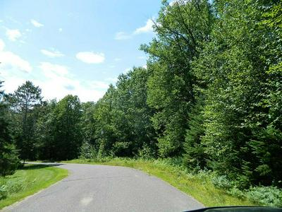 ON GOLF COURSE RD, Winter, WI 54896 - Photo 1