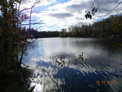 0N BLACK OAK RD # LOT 1, Deerbrook, WI 54424 - Photo 2