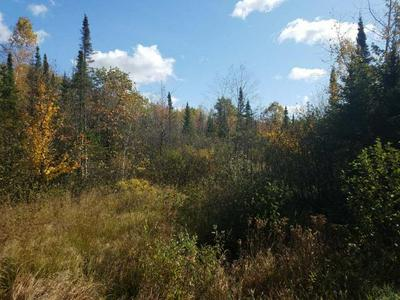 N7686 CTH D, Brantwood, WI 54513 - Photo 2