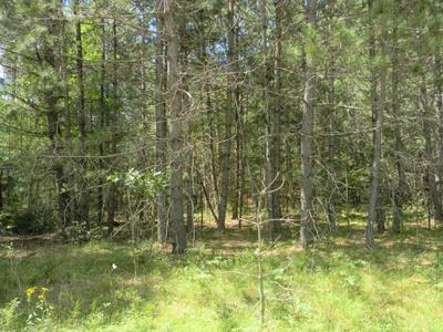 ON BLUE JAY LN # LOT 19, Elcho, WI 54428 - Photo 1