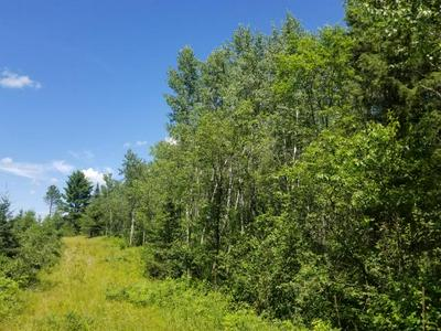 OFF JENNY LAKE RD, Tomahawk, WI 54487 - Photo 1