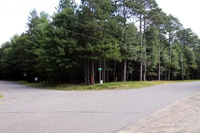 ON PINE CONE DR, Woodruff, WI 54568 - Photo 2